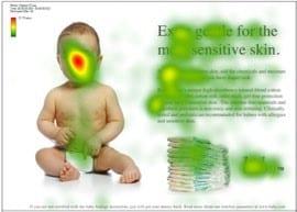 الشكل 2: النسخة 1 من تتبع حركة العين.